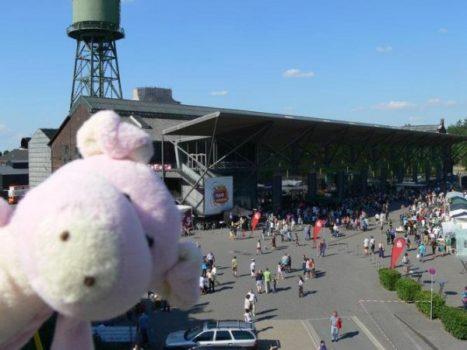 Traveling-Pig
